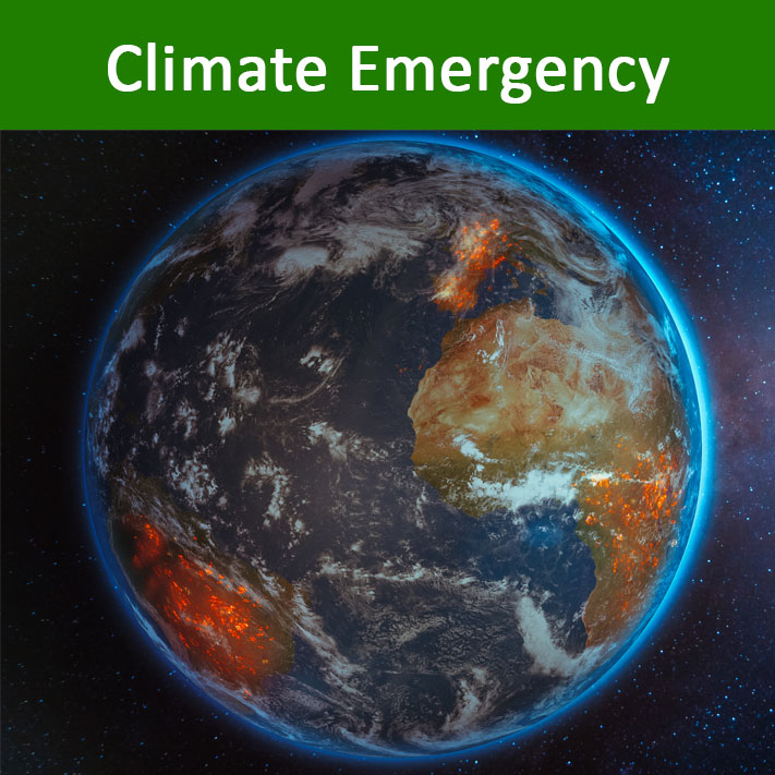 Climate Emergency Icon